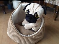 Reduced Price Lovely Dog or Cat Bed Slightly Hooded