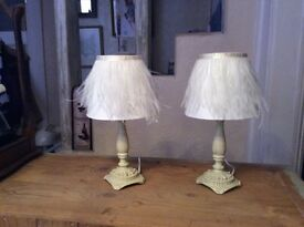 Two bedside table lamps