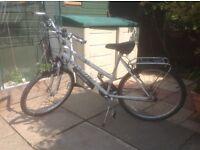 LadiesApollo Bicycle for Sale