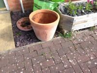 "18"" terracotta flower pot"