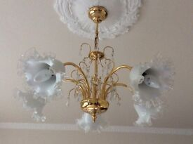 3 Chandeliers, 2 Wall lights, 2 Picture lights all Brass.( with original shades) £125.