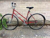 Bike Falcon. 28 wheels