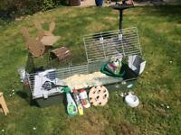 Large rabbit/guinea pig cage plus