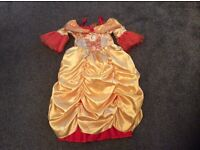 A beautiful princess costume in a size 5-6 years (Reversible) 2 outfits in 1.