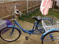 Brand new fold up trike comes with two white baskets and reflectors on the back