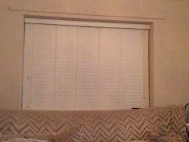 White Venetian style blind shutter style
