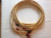 Van den hul cs -122 hybrid speaker cable