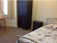 Beautiful medium sized room for one person - W12