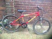 Boys Exodus Mountain Bike 12 sp (age 8-11)