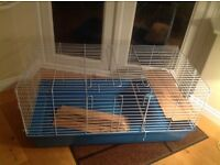 Indoor guinea pig cage. Will hold two pigs or one small rabbit. Plastic. One metre wide.