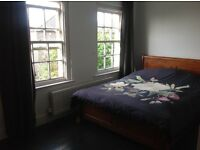 Beautiful large double room for lodger