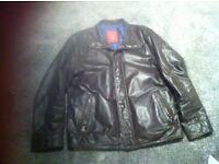Trapper leather jacket