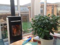 Wood Burning Stove Hass + Sohn 6Kw