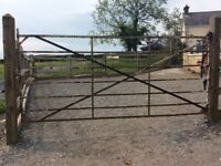 Looking for old style field gates - any condition considered
