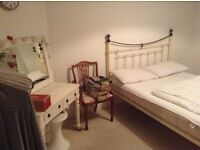 Large bright room to rent for single professional