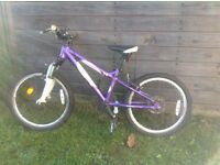 Kids Carrera mountain bike £40