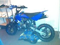 125cc pitbike just needs nuw head cums wive full sper back brake need it gon ASAP