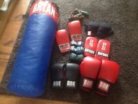 Boxing Bag and sparring gloves