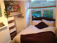 Clean Comfortable Double room available for a week