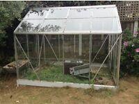 Greenhouse 8x6