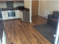 A luxury one bedroom in E1 central. 560 Square foot Fully furnished. Balcony. Extremely spacious