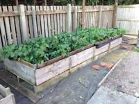 FREE - TOP SOIL AND RAISED BEDS. WILL SEPARATE - FREE