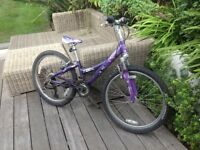 Girls purple bicycle for sale