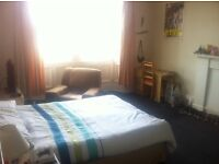 Spacious, Central, Double Room for Festival Let