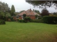 West Cowick: Beautiful 2/3 bedroom bungalow in spacious gardens in lovely rural location