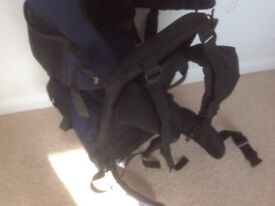 Baby hiking walking carrier very cheap price as need the room!