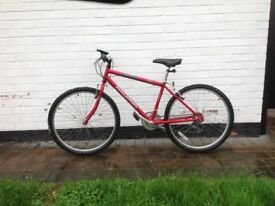 Bicycle, Raleigh, Firefly, 26 inch wheels