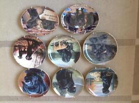 Labrador dog plates