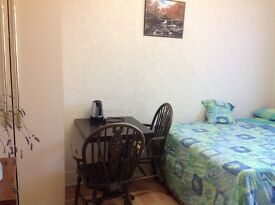 Double Room available immidietley