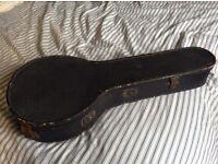 Mandolin with custom case