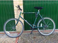 Mens Raleigh Genesis Special Edition bike
