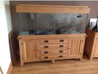 Aqua Oak 450 litre fish tank