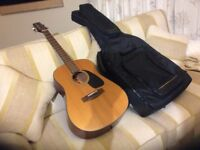SAMICK SW210 Acoustic Guitar - Artist Series Edition