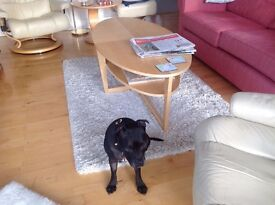 IKEA coffee table - in perfect condition - looking for a new home