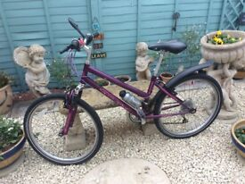 Teenager/Young Ladies bike 20'' wheels in good working order - a Bargain at £20!