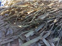 Wood for burner, bonfires etc