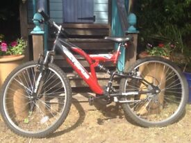 Olympus Spectrum 18 gear child's mountain bike