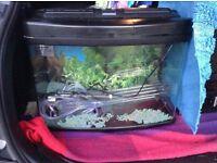 Fish tank 64 litre