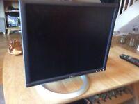 Dell 19 inch Monitor