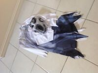"""Kids """"Ghost"""" costume with mask - Age 7-8 years"""
