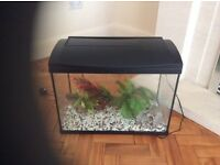 LARGE FISH TANK WITH VENTED LID