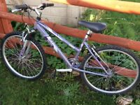 Ladies/girls Raleigh mountain bike