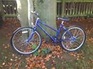 Ladies Rayleigh mowhawk bicyle 5 gears for sale, not been used £18