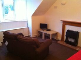 One bedroom flat for rent in Selkirk