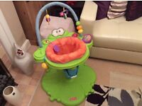 Fisher Price Compact Jumperoo- Frog Design