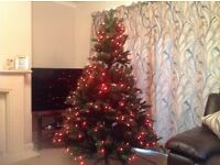 Baltic spruce outdoor & indoor use colour changing from red to pink to blue low power LEDs bulbs